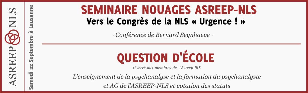 Seminaire Nouages ASREEP-NLS et Question d'école